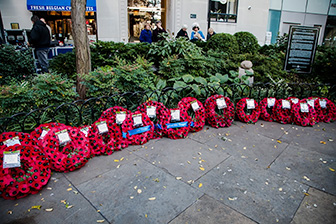 Reflections of Remembrance Day